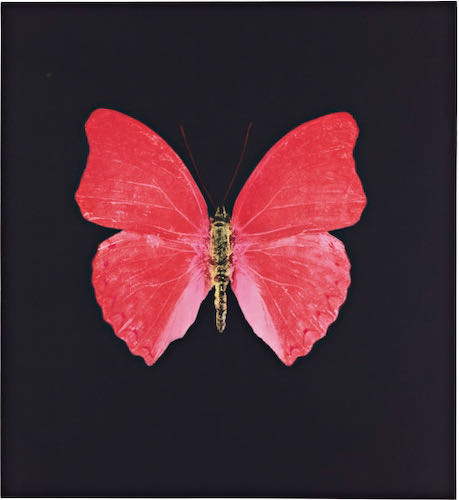 Damien Hirst, Red Butterfly, 2008  | Article on ArtWizard